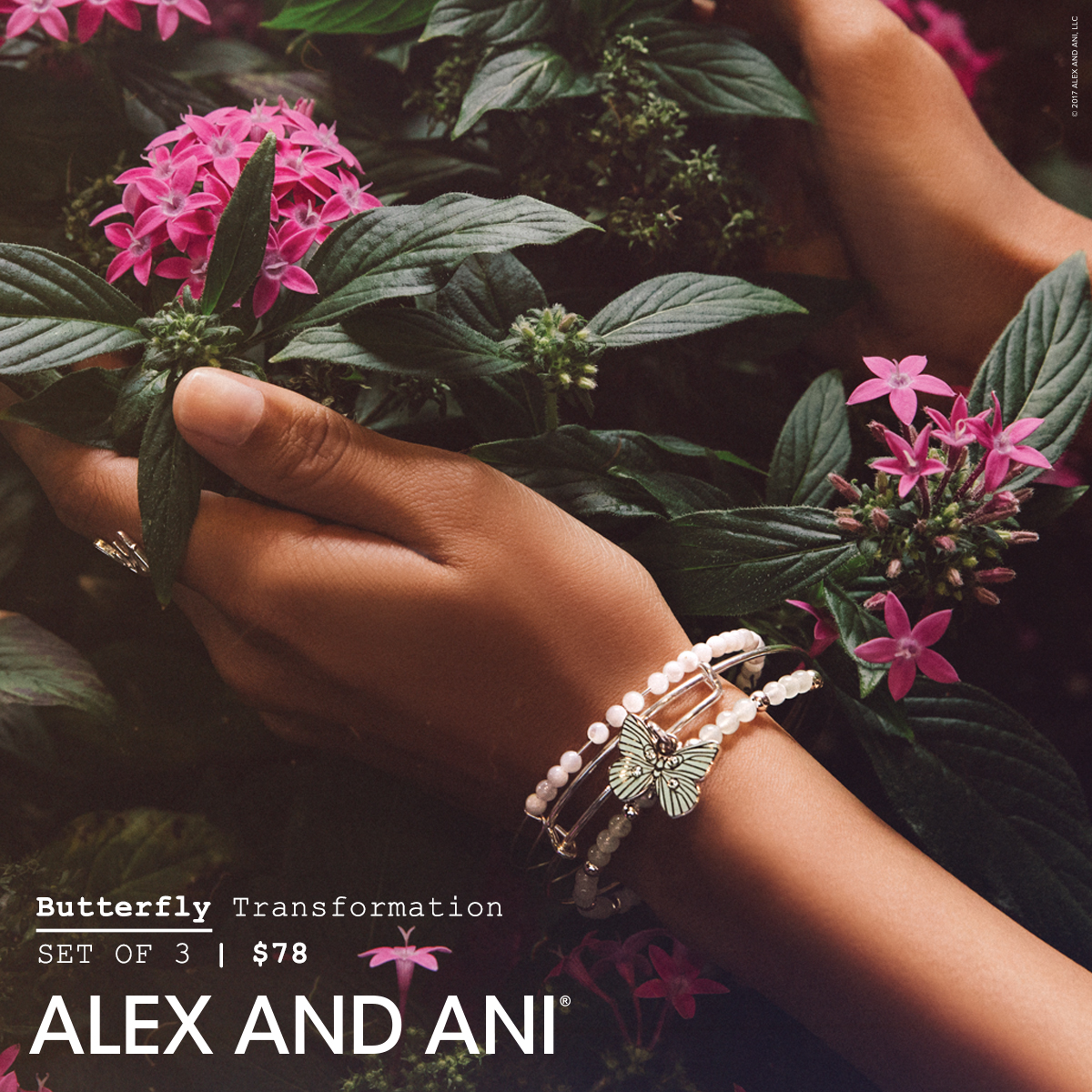 alex and ani spring butterfly